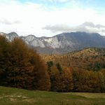 Autumn colors, mountains view