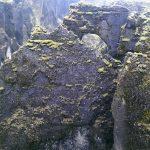 118 - May 1st - Fjaðrárgljúfur (4)