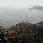 156 - May 3rd - Reykjanesfólkvangur National Park (5)
