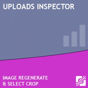 Uploads Inspector Premium Extension