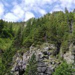 Sky, trees, rocks