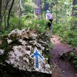 Blue arrow, trail marker